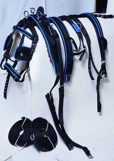 NYLON DRIVING HARNESS SET BLACK/BLUE FULL COB PONY SHETLAND
