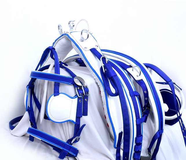 NEW NYLON WEBBING DRIVING HARNESS BLUE & WHITE PADDING