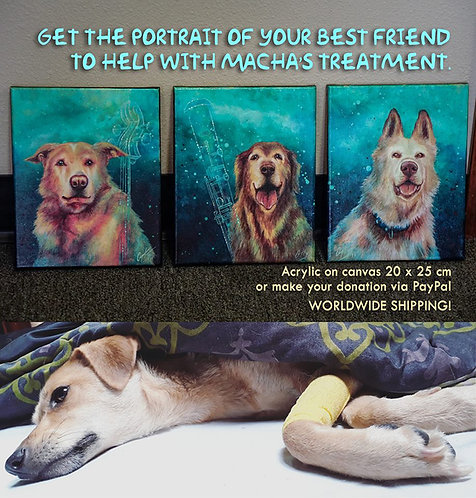 Your Pet portrait to help with Macha's healthcare