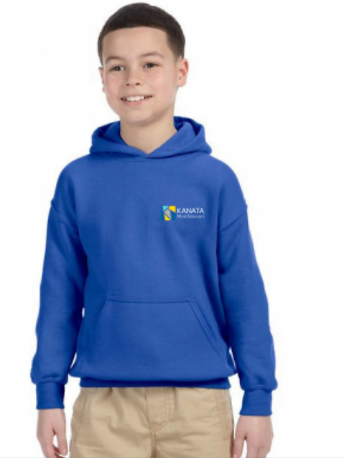 Youth Hoodie Embroidered