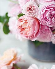 David Austin Boscoble Rose