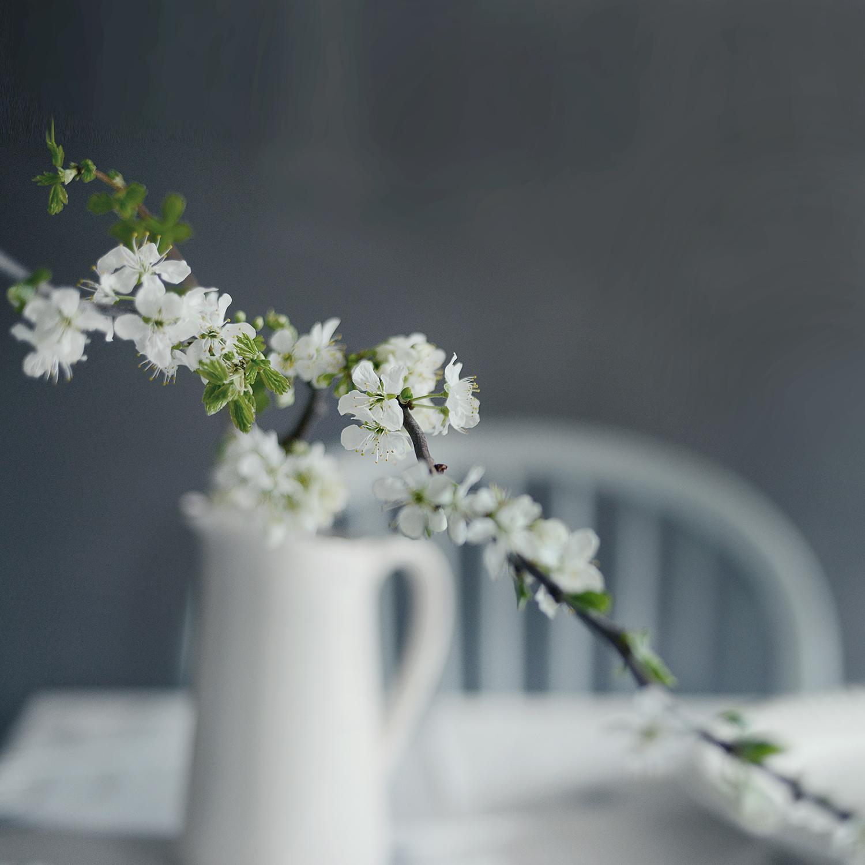 Spring16_29
