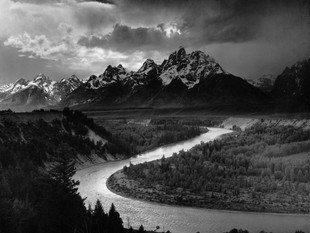 Ansel Adams at the Museum of Texas Tech University