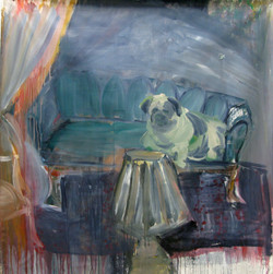 Pig Dog in Interior Space
