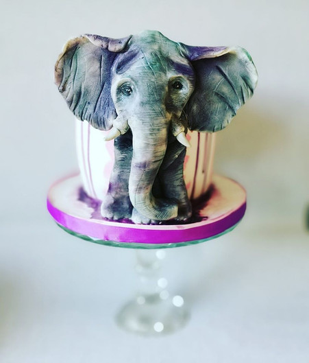 elephant homemade birthday party celebration cake billingshurst west sussex perfect party cake