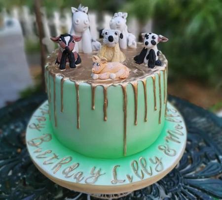 animal drip birthday party celebration cake billingshurstdrip birthday party celebration cake billingshurst