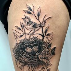Bird Nest Crown