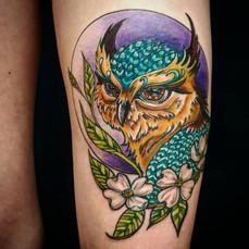 custom colour owl.jpg