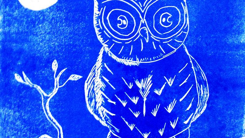 Moonshine Owl