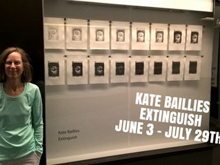 Kate Baillies // +15 window gallery