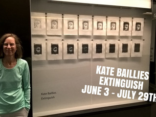 Kate Baillies // +15 window gallery
