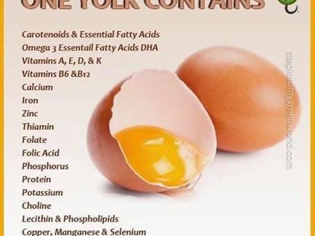 Eat Pastured Eggs