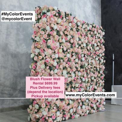 Blush Flower Wall.jpg