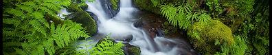 landscape-forest-waterfall-water-nature-grass-859756-wallhere.com.jpg