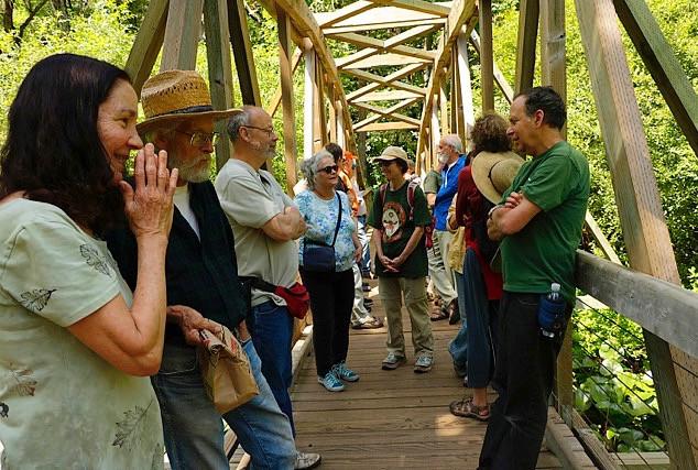 On the Pond Bridge