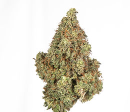 cbd-04-frosted-lime.jpg