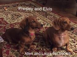 presley and elvis
