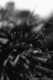 sculptures metal, n-uman.com