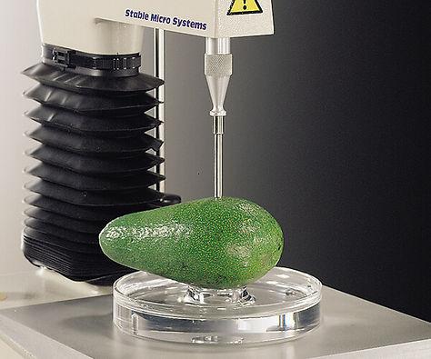 A/CS 樣品固定盤-果蔬