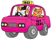 Vet Taxi Image - All The Cats