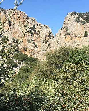 gorge Kritsa-5.jpg