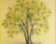 Fresque murale, mimosa, peinture acrylique de Pascaline Bossu. Kokkino Home