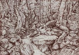 Platane, dessin à la sanguin de Pascaline Bossu, Thassos Grèce