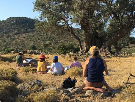 Cours de croquis au temple de Zeus à Egine