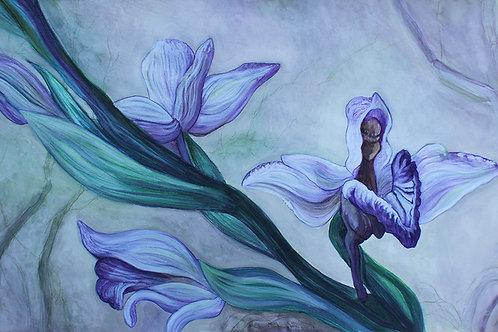 R-Orchidées-03