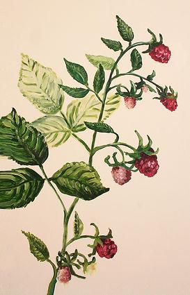 fresque framboisier de Pascaline Bossu, décoration inspirée des jardins de Versailles et du style Marie-Antoinette