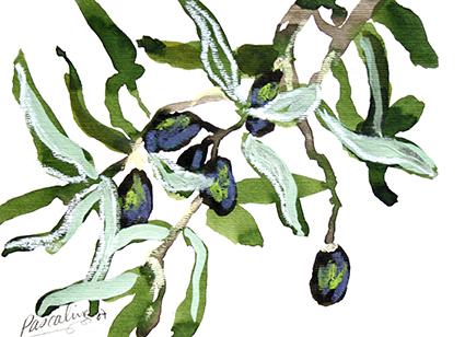 Olives de Thassos