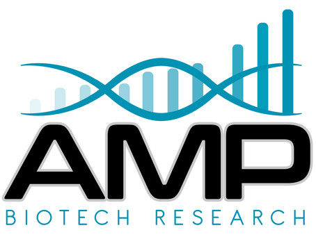 Amp Core Q2 '19 Report
