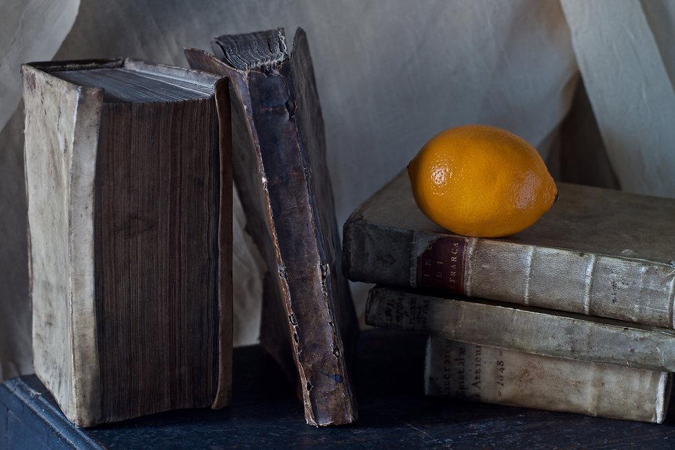 15_Osborn_Orange.jpg