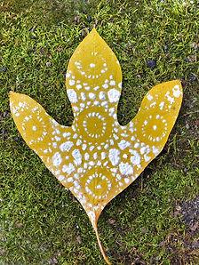 10 Yellow Leaf.jpg