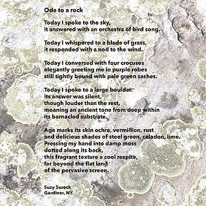Ode to a Rock