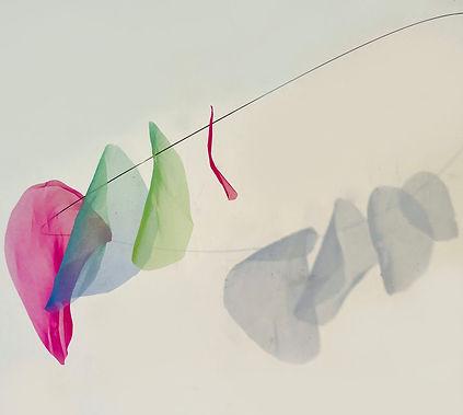 4-Bloom.jpg