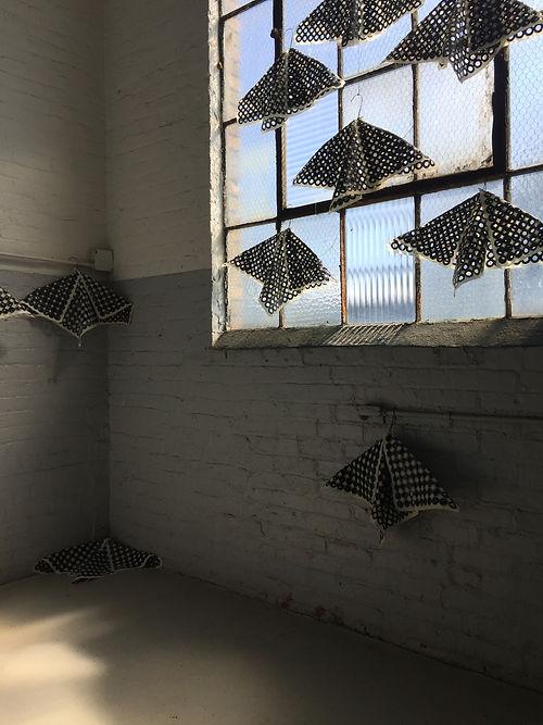 45_Weinstein_Moths_Installation Overview