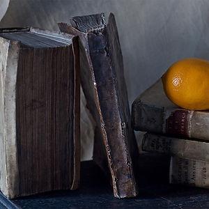 Dustan Osborn Petrarch & Orange