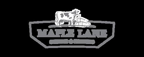 Logo Reel-12.png