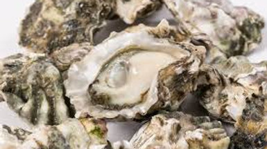Kumamoto Oysters (6pc)