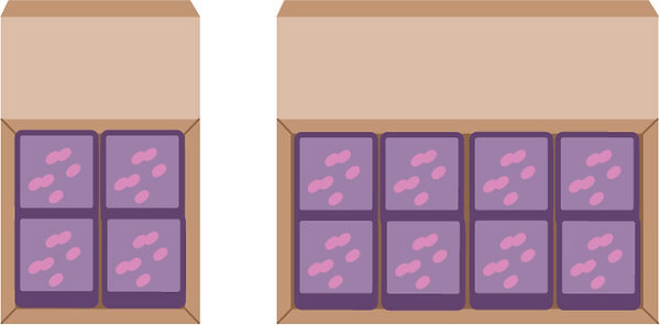 VEGAN SLICES BOX.jpg