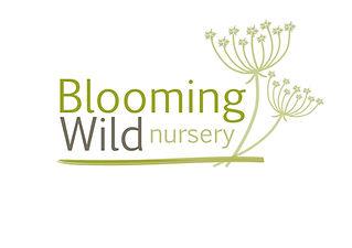 BW Logo  (2).jpg