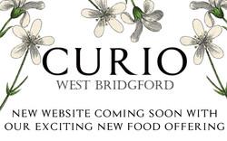 curiowebsite