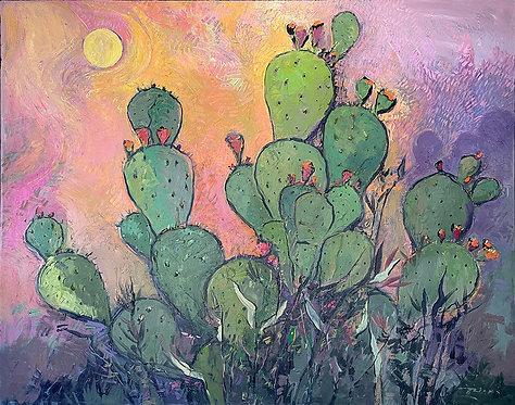 Cactus Van Gogh