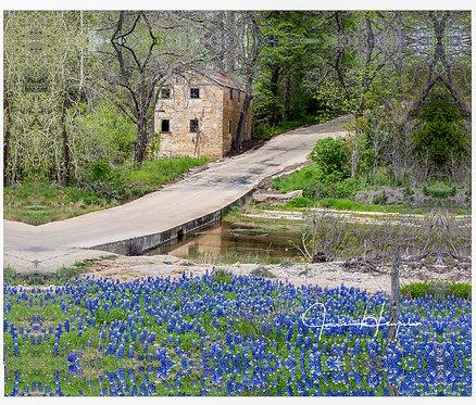 Lange's Mill & Bluebonnets