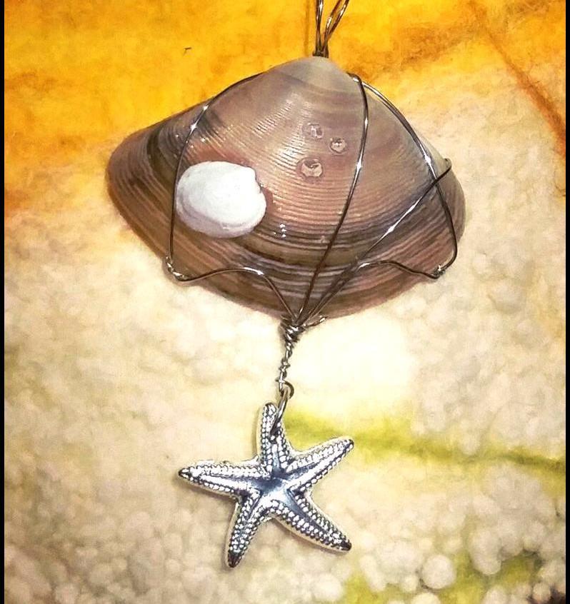 Shell starfish