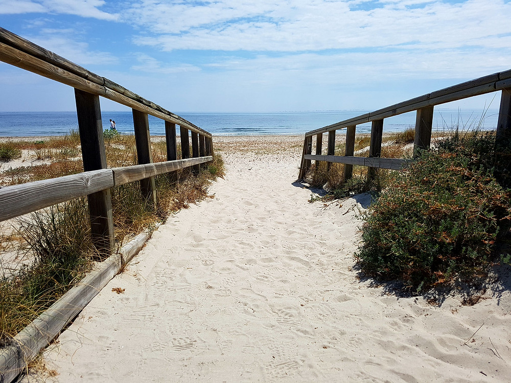 Boardwalk reminds me of Australia