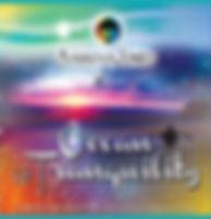 Ocean of tranquillity cover.jpg