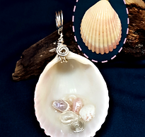 Pink shell front and back_edited.png