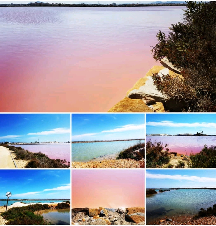 Salt Flats at Pinatar